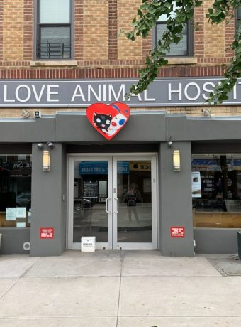 one love animal hospital 8209 3rd ave