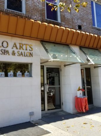 pilo arts day spa and salon 8412 3rd ave